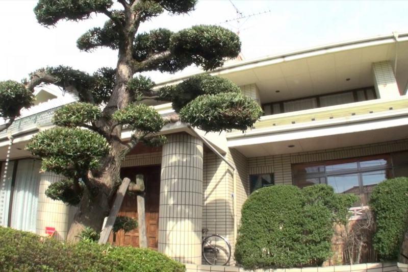 aoyamaaoi6002