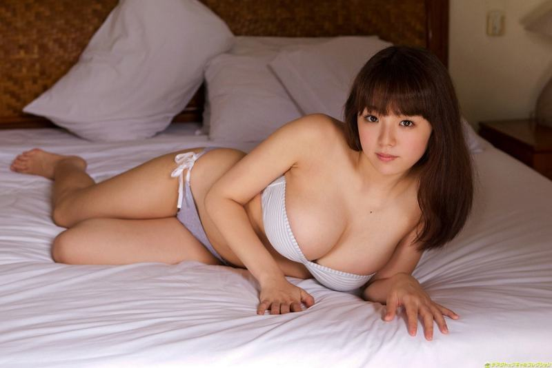 sinozakiai7019
