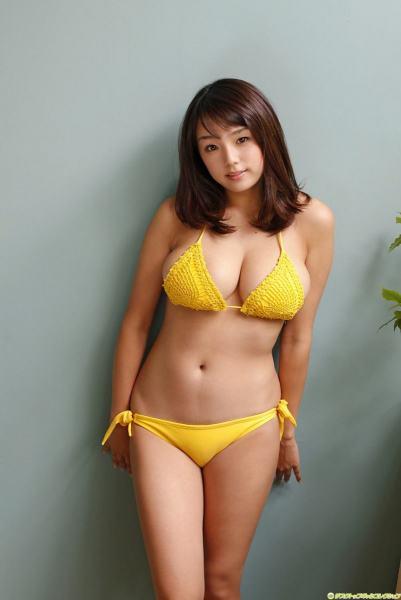 sinozakiai8040