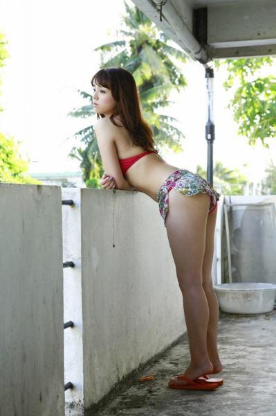 sinozakiai9048